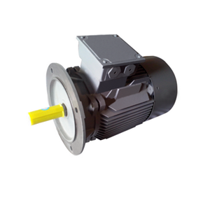 FLANGE MOUNTED 3 PHASE SQUIRREL CAGE INDUCTION MOTORS