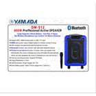 Yamada DM-S12 800W Active Speaker portable MP3 WMA Music USB Wireless microphone Bluetooth AUX 2