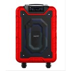 Yamada DM-S12 800W Active Speaker portable MP3 WMA Music USB Wireless microphone Bluetooth AUX 3