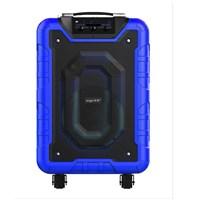 Yamada DM-S12 800W Active Speaker portable MP3 WMA Music USB Wireless microphone Bluetooth AUX