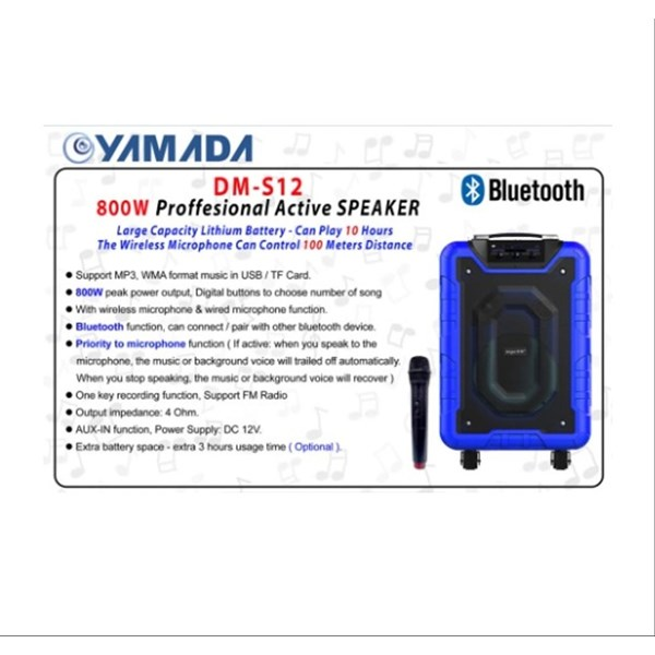 Yamada DM-S12 800W Active Speaker portable MP3 WMA Music USB Wireless microphone Bluetooth AUX