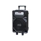 Yamada DM-S21 Speaker portable  Bluetooth Professional Active Karaoke Original 1