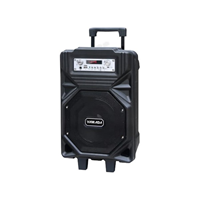 Yamada DM-S21 Speaker portable  Bluetooth Professional Active Karaoke Original