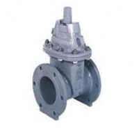 Resilient Seated Gate Valves Model SE-1 SF-1 1