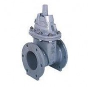 Resilient Seated Gate Valves Model SE-1 SF-1