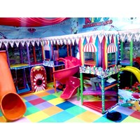 Playground Anak Indoor Murah 5