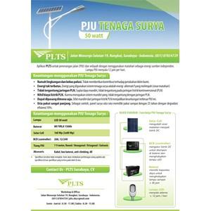 PAKET PJU TENAGA SURYA 50 Watt - LAMPU SOLAR