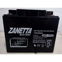 Accu Vrla Gel Zanetta 12 v 45 AH untuk UPS Solar P
