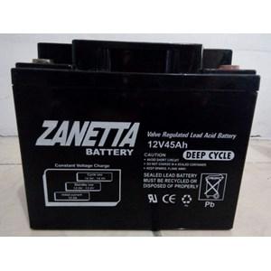 Dari Accu Vrla Gel Zanetta 12 v 45 AH untuk UPS Solar Panel dan Lampu Jalan 0