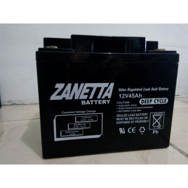 Accu Vrla Gel Zanetta 12 v 45 AH untuk UPS Solar Panel dan Lampu Jalan