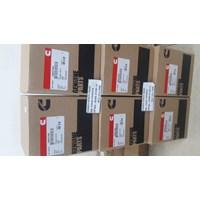 Cummins 3957795 Piston Kit 1