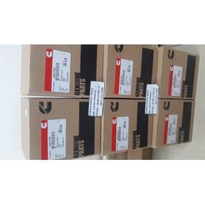 Cummins 3957795 Piston Kit