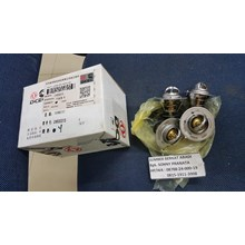 Cummins DCEC Thermostat C4930315