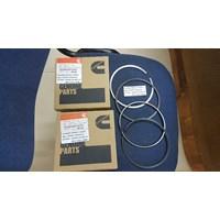 Distributor Cummins Piston Ring Set 4089810 3