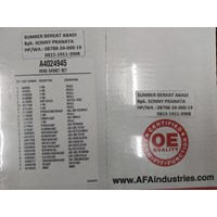 AFA A4024945 HEAD GASKET SET - USA GENUINE