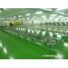Conveyor flat Belt PU Pvc 3
