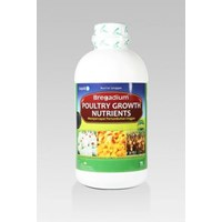 Poultry Growth Nutrients - Nutrisi Unggas
