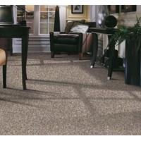 Jual Karpet Tile dan Karpet Roll 2