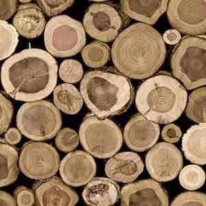 Jual wallpaper motif kayu harga murah jakarta oleh toko for Where sells wallpaper