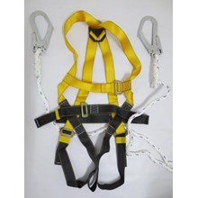 Body harness double hook lanyard