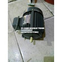Foot mounted motor - Dinamo Motor 3Phase type foot mounted atau flange mounted ( Tatung - Teco - Marelli - Aero - Melco - ADK - dll)