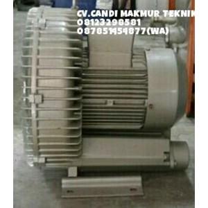 Dari Ring blower- side chain blower (mapcato - Ho-shing) -Direct Centrifugal Blower(blower sedot) 5