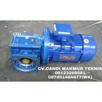 gear box reducer(NMRV-WPA-WPX-WPS-WPO)