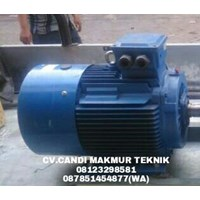 Induction Motor (Teco-Tatung-Melco-Motology-Siemens-Elektrim..