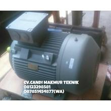 INDUCTION MOTOR (Teco-tatung-melco-motology-siemens-Elektrim-western-ADK)