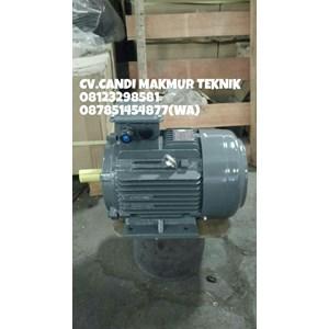 Dari INDUCTION MOTOR (Teco-tatung-melco-motology-siemens-Elektrim-western-ADK) 4
