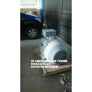 Dari INDUCTION MOTOR (Teco-tatung-melco-motology-siemens-Elektrim-western-ADK) 5
