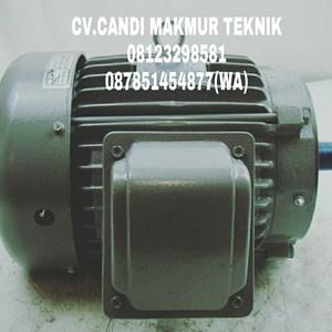 Dari INDUCTION MOTOR (Teco-tatung-melco-motology-siemens-Elektrim-western-ADK) 9