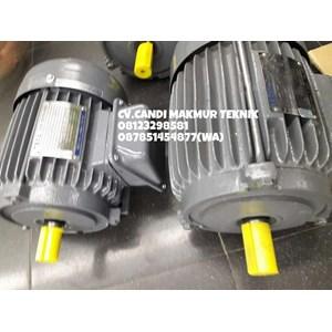 Dari INDUCTION MOTOR (Teco-tatung-melco-motology-siemens-Elektrim-western-ADK) 1