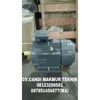 Jual Dinamo mesin-Teco electric motor-induction motor