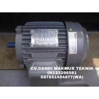 Dinamo Mesin-Teco Electric Motor-Induction Motor