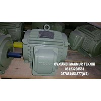 Jual Dinamo-Induction motor class H (tahan suhu panas api) 2