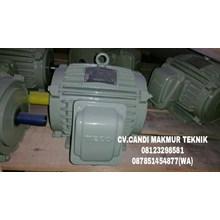 Dinamo-Induction motor class H (tahan suhu panas api)