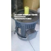 Three phase induction motor (marelli-teco-tatung-melco-siemens-motology-ADK-dll) Murah 5
