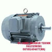 Jual Dinamo Tatung Induction Motor 3phase Harga Murah