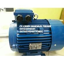 Three phase induction motor (marelli-teco-tatung-melco-siemens-motology-ADK-dll)