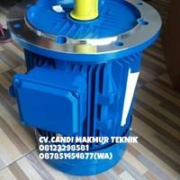 Flange motor 3phase type B5 - B35 flange mounted(vertical) teco-tatung-melco-motology - Marelli --dll Murah 5