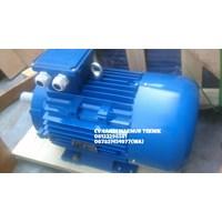 Beli Electric Motor 3 Phase Marelli - Teco - Melco - Siemens - Tatung  4