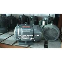 Distributor Electric Motor 3 Phase Marelli - Teco - Melco - Siemens - Tatung  3