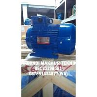 Dinamo - Melco induction motor - western electric motor
