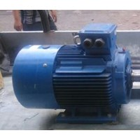Dinamo - Melco induction motor - western electric motor