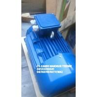 Electric Motor 3 Phase Marelli - Teco - Melco - Siemens - Tatung  1
