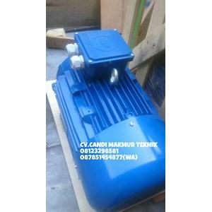 Electric Motor 3 Phase Marelli - Teco - Melco - Siemens - Tatung
