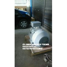 dinamo-Elektromotor 3phase (Teco-tatung-melco-siemens-motology-ADK-dll