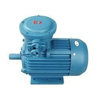dinamo explosion proof - ex proof motor