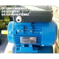 Suku cadang mesin - motor induction single phase/1phase ( famoze - Motology - Ada)